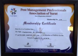 Ultra Pest Solution Client Testimonial for Best Pest Control Service